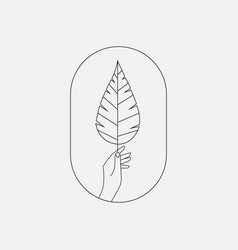 Hand holding plant branch icon vector