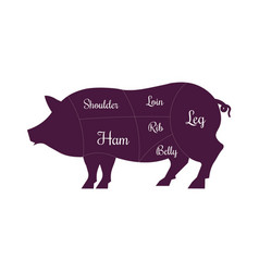 Pig pork meat cuts butcher icon vector