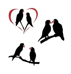 Silhouettes of a lovebird vector