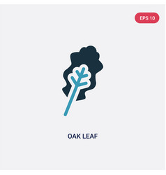 two color oak leaf icon from nature concept vector image