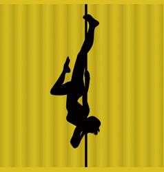 pole dance woman vector image