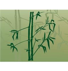 Bamboo in mist vector