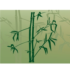 bamboo in the mist vector image vector image