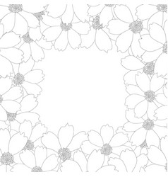 Cosmos flower outline border vector