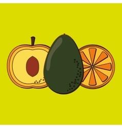 Fruits icon design vector