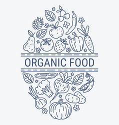 Healthy organic eco vegetarian food design vector