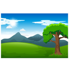 nature landscape with green meadow sunlight vector image