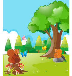 squirrels and butterflies in the park vector image