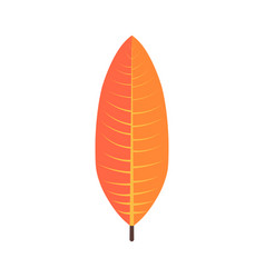 Tropical leaves floral icon autumn wood and vector