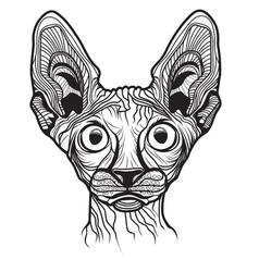 Cat head animal vector image vector image