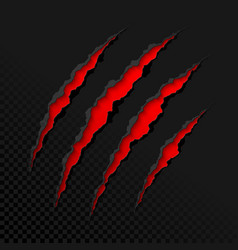 Claws scratches on transparent background vector