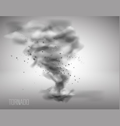 tornado on a simple background vector image