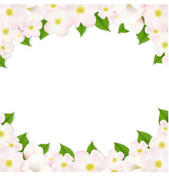 Apple flowers border vector