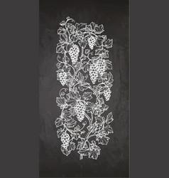 Chalk sketch grapes vector