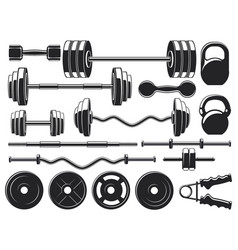 gym heavy weight equipment fitness dumbbell vector image
