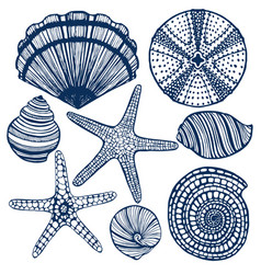 Hand-drawn maritime set vector