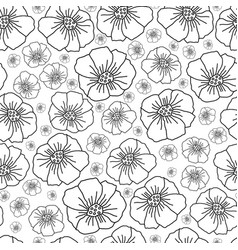 line poppies -monochromatic flowers vector image