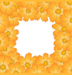 orange yellow cosmos flower border2 vector image