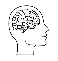 profile with brain human organ vector image