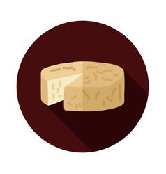 Soft cheese with mold icon vector