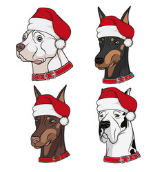 With cute dogs in christmas hats vector