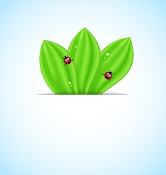 Green leaves ecology fresh background vector image