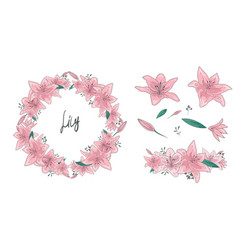 floral set flowers leaves vector image