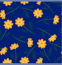 orange yellow cosmos flower on navy blue vector image