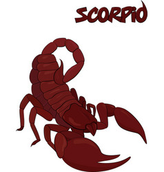 red scorpion symbol isolated on white vector image