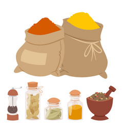 Seasoning food spicy herbs natural healthy spices vector