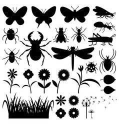 Set of insects and flowers vector