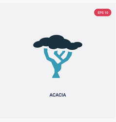 Two color acacia icon from nature concept vector