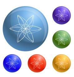 wild flower icons set vector image