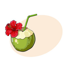 coconut cocktail drink decorated with hibiscus vector image vector image