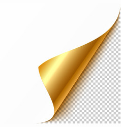 gold curled corner with reflection and shadow on vector image
