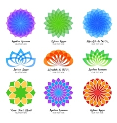 Lotus color logo label and emblem set vector image
