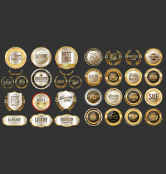 Luxury gold and silver design badges abd labels vector