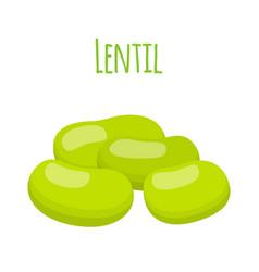 legume plant green soybeans lentil bean vector image vector image