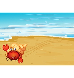 A red crab with a shell at seashore vector