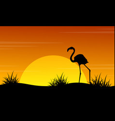 at sunset flamingo scenery silhouettes vector image vector image