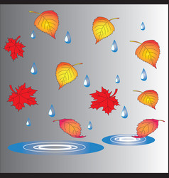 Autumn theme fallen leaves and puddles vector