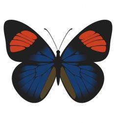 batesia hypochlora vector image