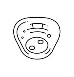 Human cell vector