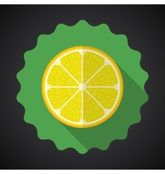 Lemon Orange Fruit Flat Icon with long shadow vector image