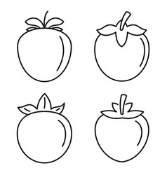 Persimmon fruit icon set outline style vector