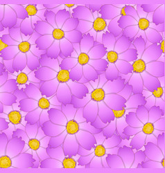 Pink cosmos flower seamless background vector
