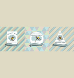 three colored labels with chamomile vector image