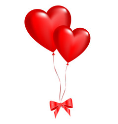 two balloons in the shape of hearts on a white vector image