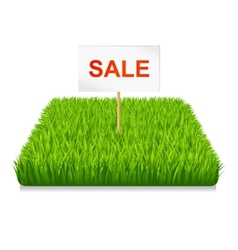 Sale Green grass vector image