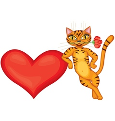 Tabby cat gives heart vector image vector image